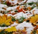 Погода в Туле 25 октября: облачно, холодно, небольшой снег
