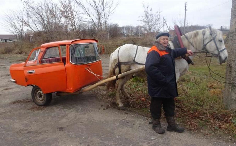 В Каменском районе братья-умельцы сделали повозку из старого «Москвича»