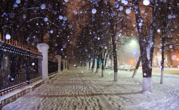 Вечером 12 января в Туле ожидается сильный снегопад