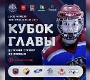 В Новомосковске пройдет Кубок главы города по детскому хоккею