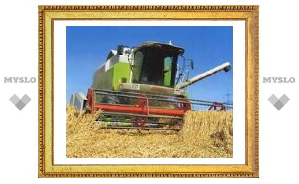 В Туле используется только половина сельхозугодий