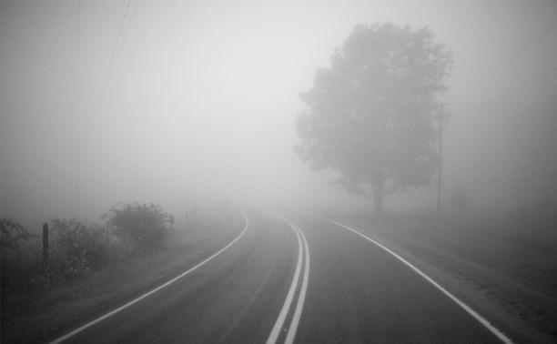 Утром в субботу Тулу накроет туман