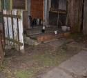 Подробности убийства в Богородицке: Когда мужчину сжигали, он был еще жив