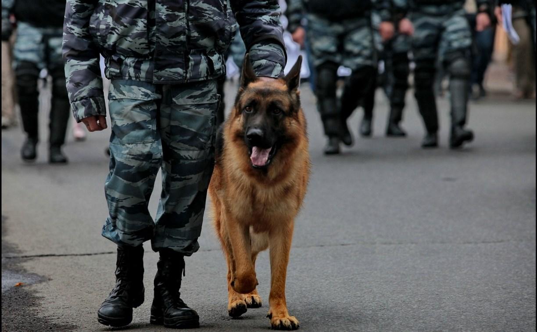 В Ефремове кинолог с собакой обнаружил преступника