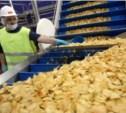В 2016 году в Тульской области появится завод по производству чипсов