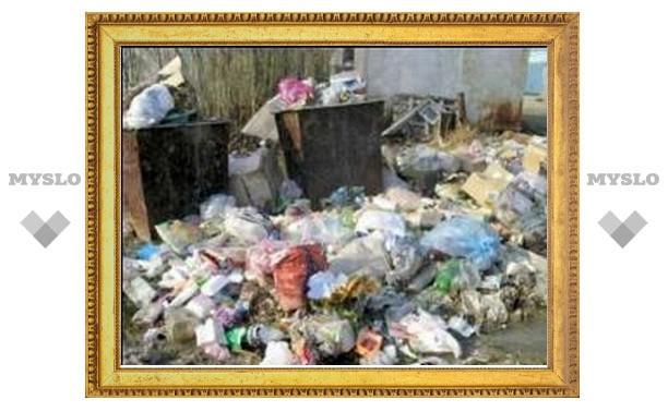 Нарушители правил благоустройства в Туле будут привлечены к ответственности