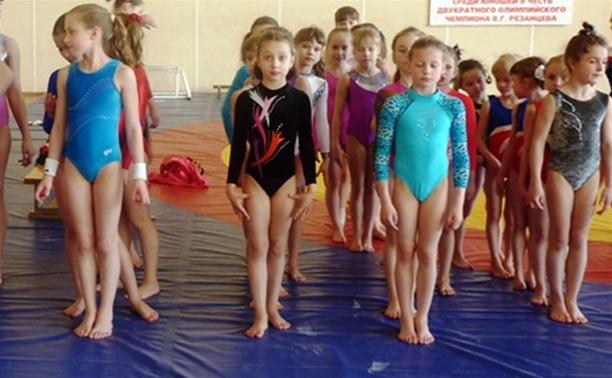 В Новомосковске прошел турнир по спортивной гимнастике памяти Паншина