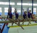 Тульские гимнасты отлично выступили на родном помосте