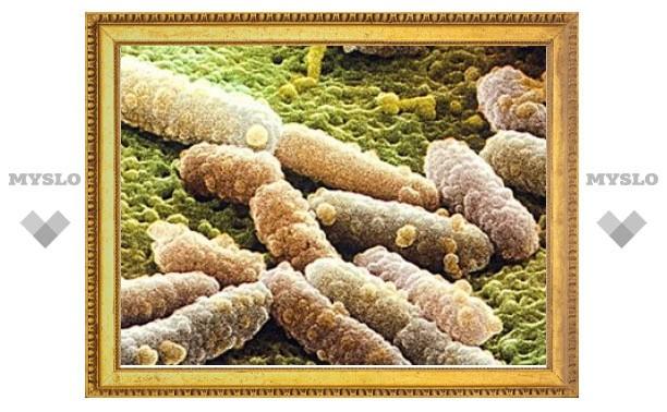 Вспышку кишечной инфекции в Европе вызвал ранее неизвестный микроб