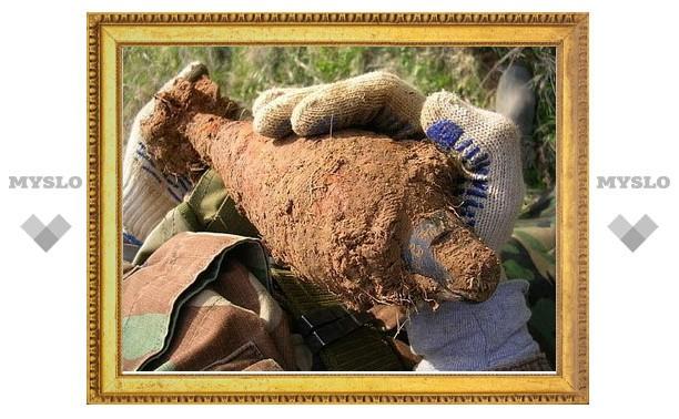 В тульском парке нашли мину