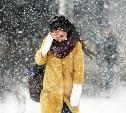 Погода в Туле 8 декабря: днем возможен мокрый снег и дождь