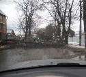 В Туле сильный ветер повалил дерево и рекламный щит
