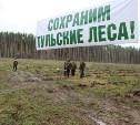 В Белёвском лесничестве высадили 13 000 дубов