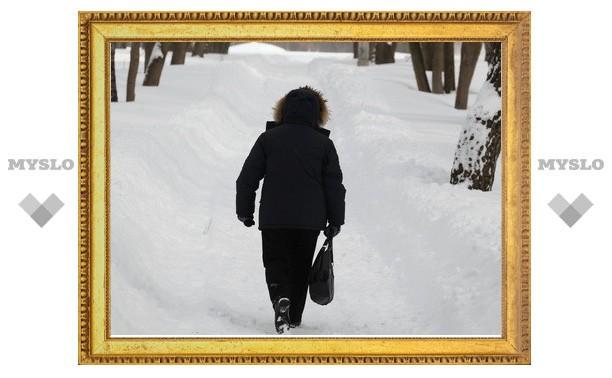 В Одоевском районе жители сидят без хлеба из-за нерасчищенных дорог