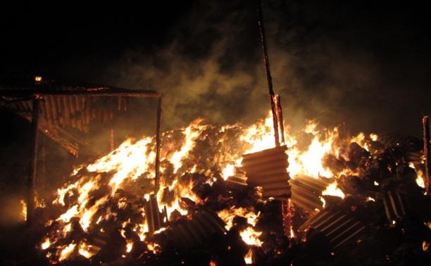 Ночью в Узловском районе неизвестные подожгли сенохранилище