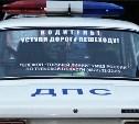 Полицейские ищут очевидцев ДТП со сбитым в Барсуках пешеходом