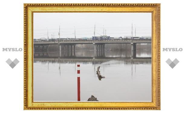 В Тульской области паводок может затопить 14 мостов