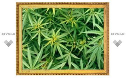 Умирающей американке запретили курить марихуану