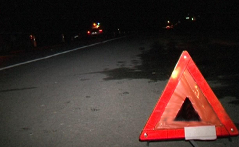 В Туле на Епифанском шоссе «Мерседес» насмерть сбил жеребенка
