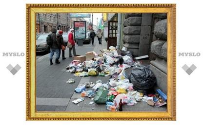 Ежегодно в Тульской области поступает более 800 жалоб на загрязнение территории региона мусором