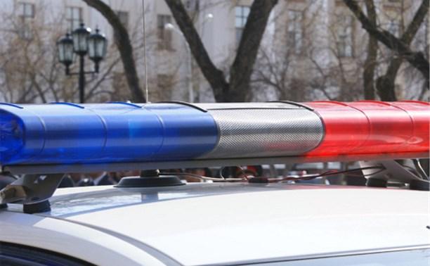 Тульские улицы будет патрулировать спецподразделение московского ГИБДД