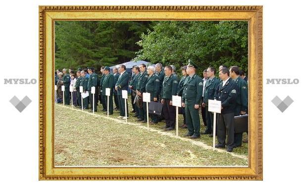 В Тульской области не хватает специалистов лесного хозяйства