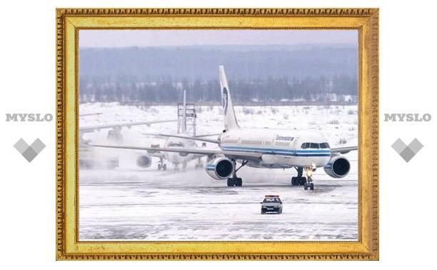 В Ефремове Тульской области откроют новый аэродром?
