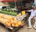 В Туле прошел рейд по точкам незаконной торговли арбузами