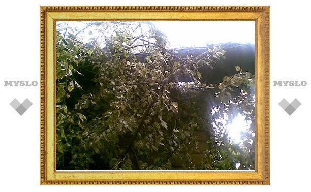 Ураган обрушил дерево на одну из тульских крыш