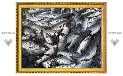 Под Тулой задержаны рыбные похитители
