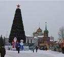 В Туле установят 70 новогодних елок