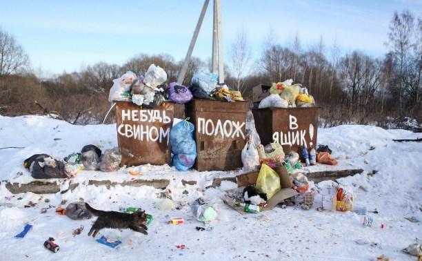 Туляки будут сортировать мусор, как в Европе