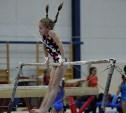 В Туле пройдет Всероссийский турнир по спортивной гимнастике