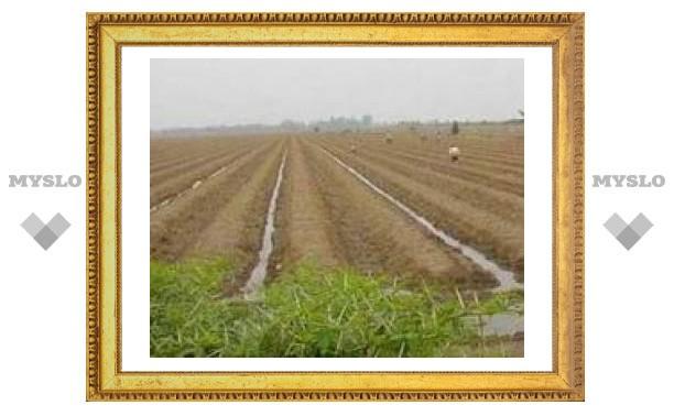 Туле необходима мелиорация сельхозучастков