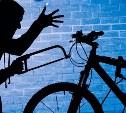 Туляк отправится в колонию строгого режима за кражу велосипеда