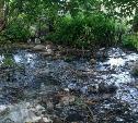 По тульской деревне Старое Басово течет река из фекалий