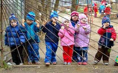Тульская область стала лидером по количеству открытых мест в детских садах