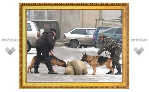 В Туле продолжают ловить наркоманов