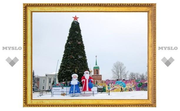 Главная елка обошлась тулякам в два миллиона рублей