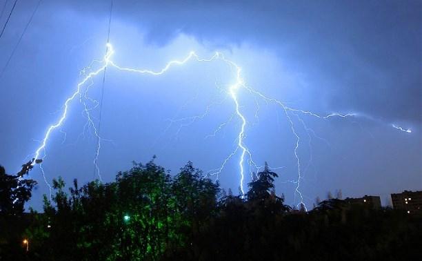 2 июля в Тульской области ожидается гроза и сильный ветер