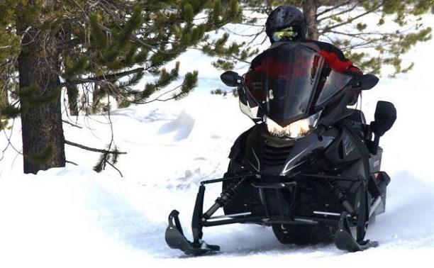 В Тульской области пьяный мужчина на снегоходе сбил четырех девочек