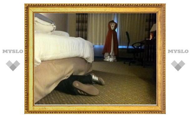 В Тульской области осудят грабителя, уснувшего под кроватью у пенсионерки