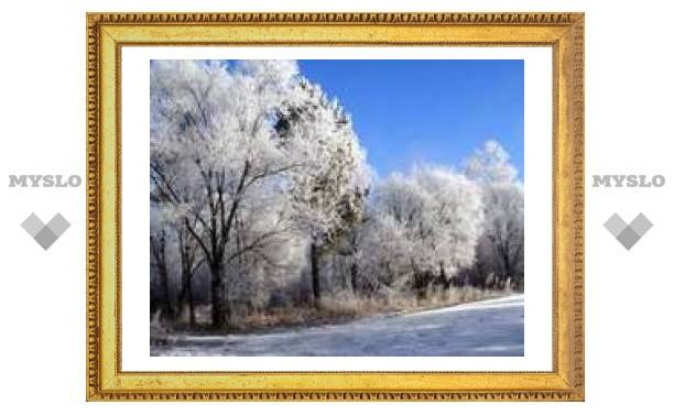 25 декабря: солнечное утро - к ясному Новому году