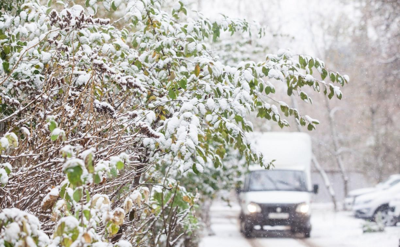 Масштабный циклон и снегопад надвигается на Тульскую область