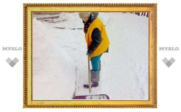 Из-за ночного снегопада у тульских дворников суббота объявлена рабочим днем