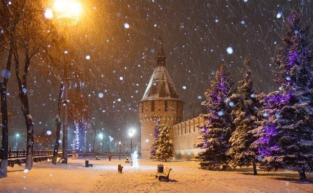 В Туле до конца недели обещают снегопады