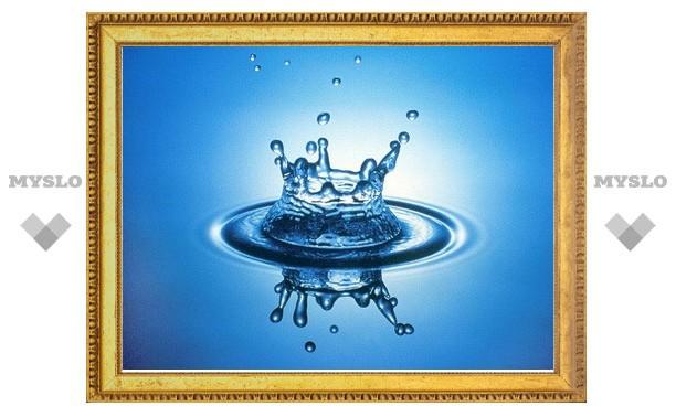 """В Туле пройдет """"Всемирный день воды"""""""