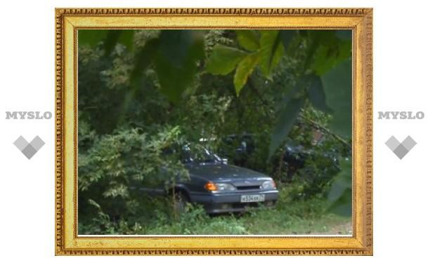 Парковка на тульском газоне - хамство или безысходность?!