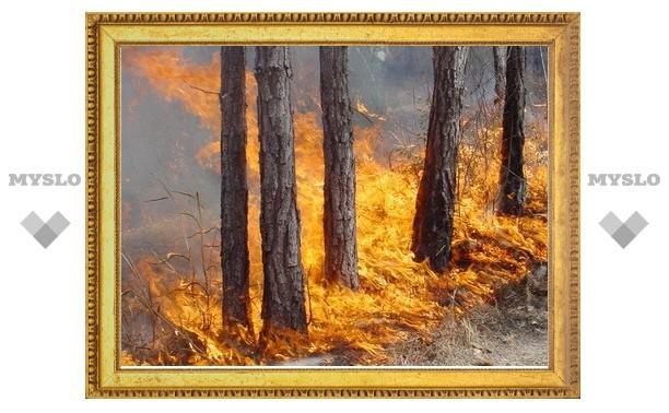 Воловской район готовится к лесным пожарам