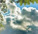 Погода в Туле 20 мая: облачно с прояснениями и до 20 тепла